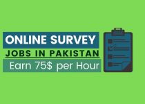 Online survey jobs in Pakistan to Earn money